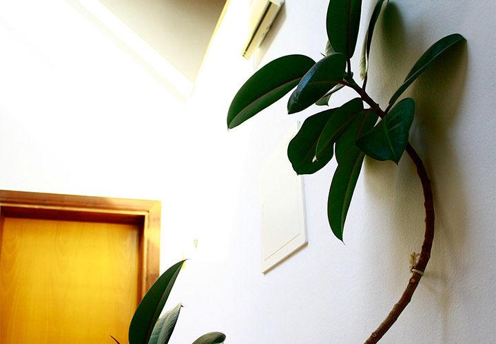 posada-tollo-espacio-comun-planta