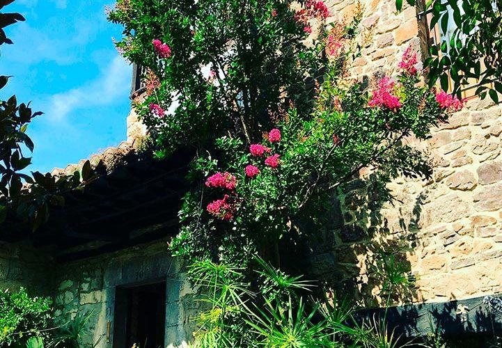posada-tollo-jardin-puerta